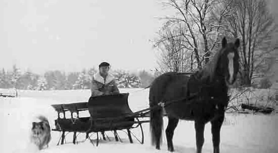 1970 horse-drawn sleigh Granite State Carriage Assoc.