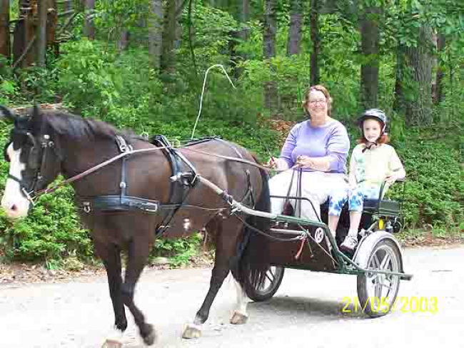Horse Cart recreation family woman child
