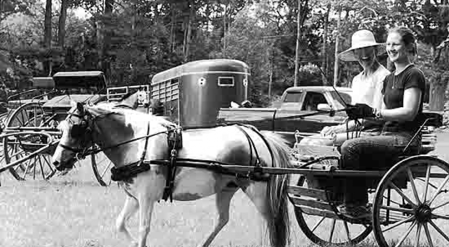 2003 Pony Cart Carriage