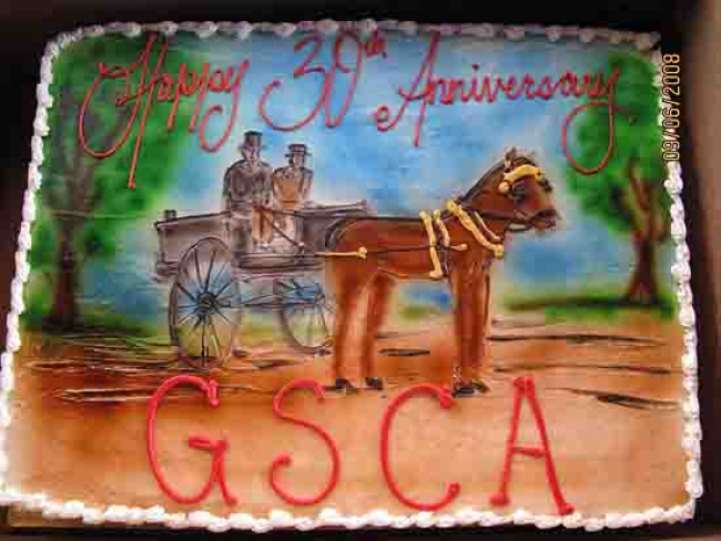 Horse Club Birthday cake