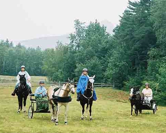 Yearly GSCA horse outing near Mt. Chocorua, New Hampshire