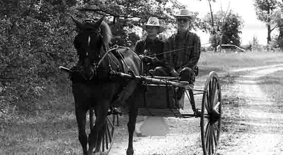 1999 horse cart shelburne farms